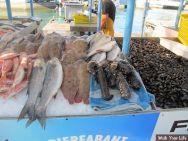 dag 1 vers uit zee aan de steiger te koop