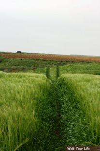 d1onderweg 2