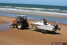 d3 vissers op het droge