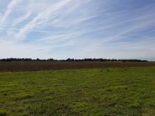 dag 1 - langs de velden