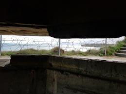 Dag 3 - Point du Hoc bunker